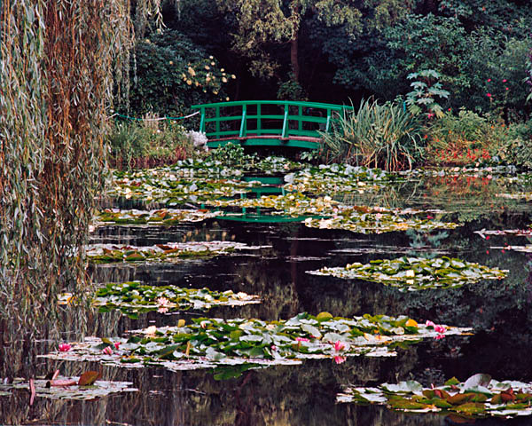 Monet's Water Lilies - Giverney, France