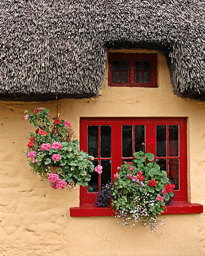 Thatch Cottage - Shannon, Ireland