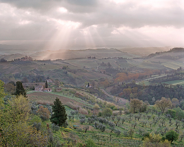 Under The Tuscan Sun - Italy