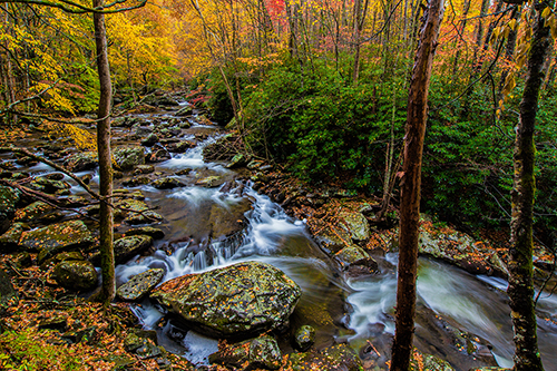 Smoky Mountains Fall Photographic Workshop Tour
